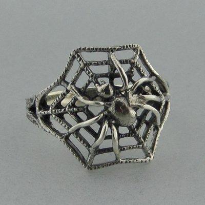 Zilveren Ring Spin in Web